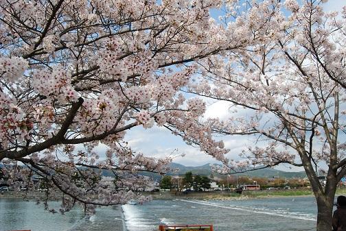 ★嵐山2014 182