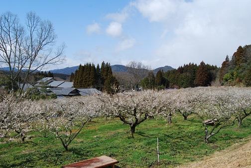 20143100sunai.jpg