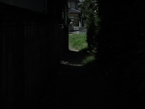 14090216b_R.jpg