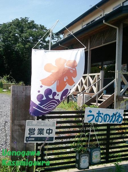 2014-08-21 uonogawa