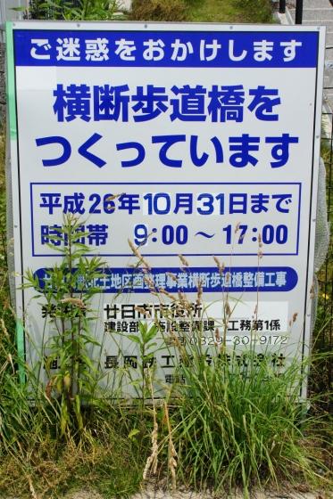 201406hatsukaichi_kita-8.jpg