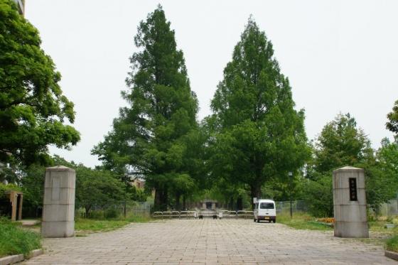 201406hirodai-2.jpg