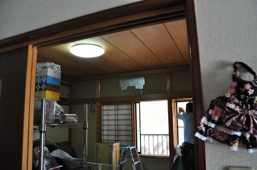 DSC_3420-1.jpg