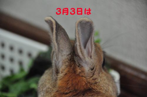 DSC_5257-1.jpg