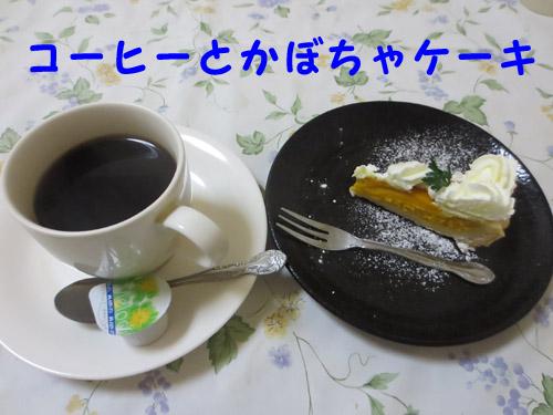 IMG_0329-1.jpg