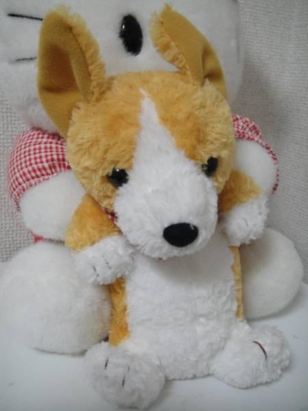 whitecolorflower-img450x600-1393490674jm9xzm30997.jpg