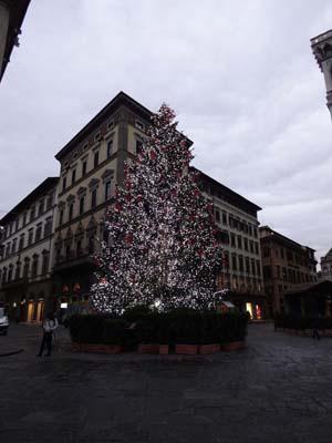 ドゥオーモのクリスマス・ツリー