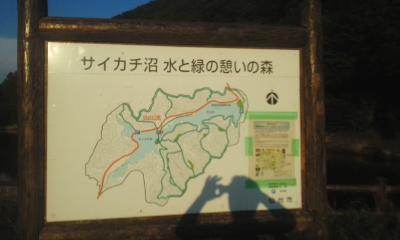 ayashi1.jpg
