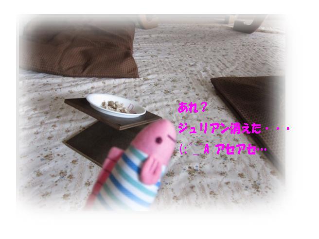 IMG_0254a.jpg