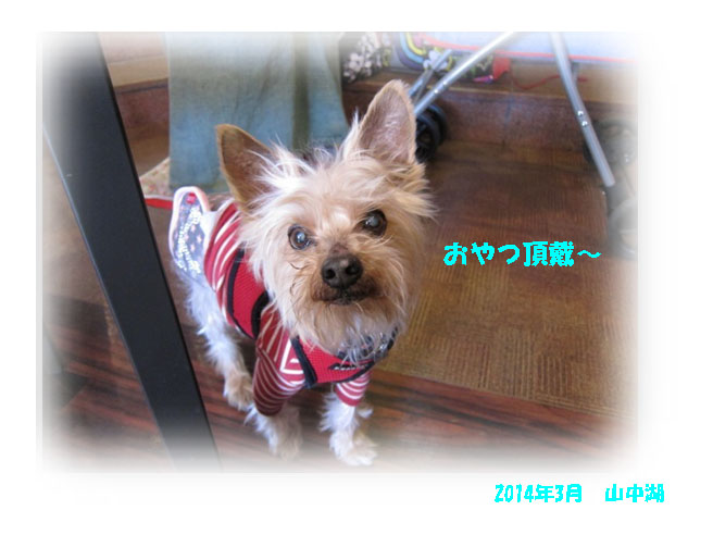 IMG_9211a.jpg