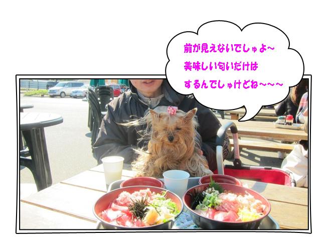 IMG_9477.jpg
