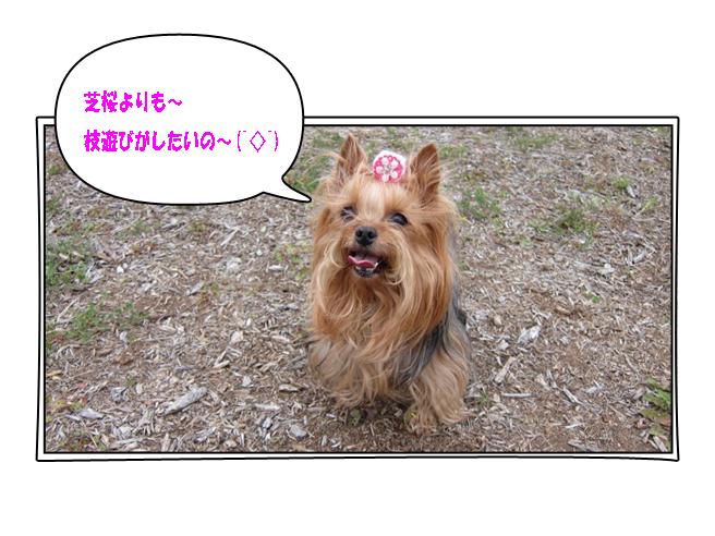 IMG_9837.jpg