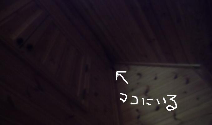 2014052703.jpg