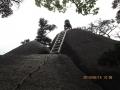 危険な梯子降り
