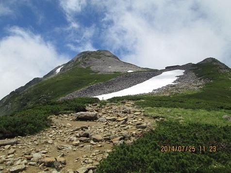 笠ヶ岳とライチョウ
