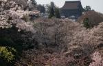 2.金峯山寺-09D 1404qtc