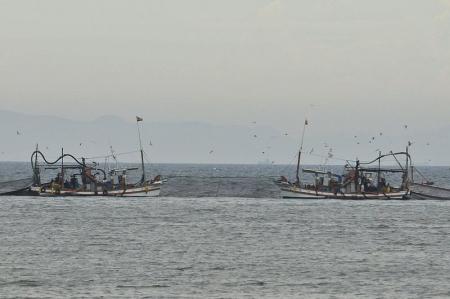 neko-ootsu-fisherboats
