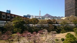 Shiba-Asakusa (1)