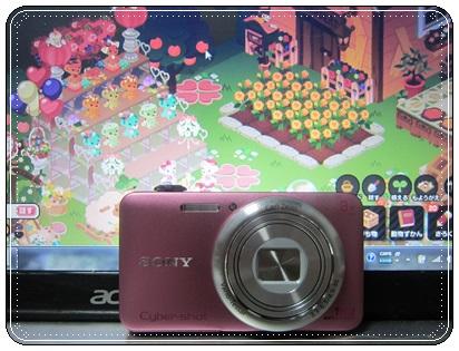 0302-WX60.jpg