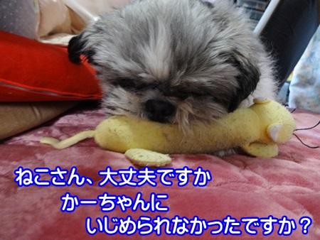 0305-04_20140305203027e5b.jpg