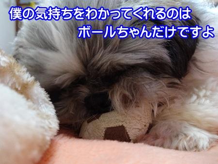 0314-04_201403141514525ea.jpg