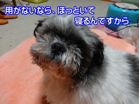 0315-05_20140315202844dff.jpg