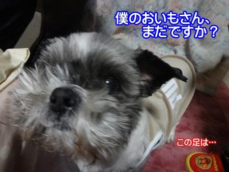 0414-02_20140414211444a43.jpg