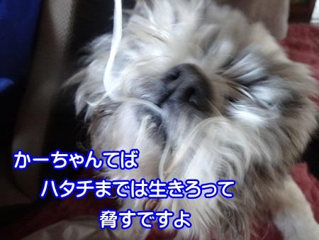 0507-04_2014050715101417e.jpg