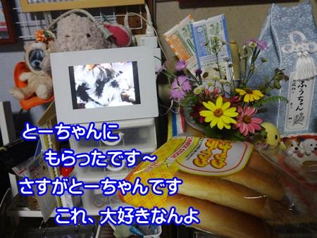 0724-04_20140724211118594.jpg