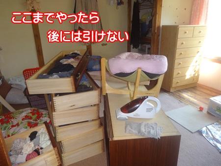 0819-a1_20140819200923c35.jpg