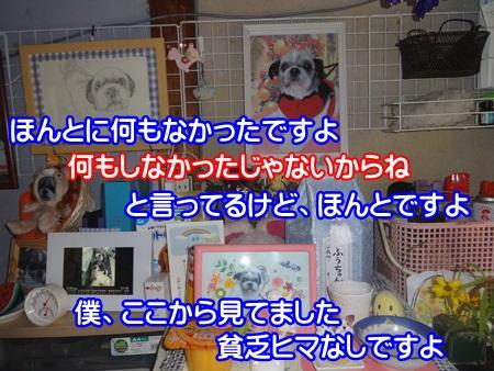 0901-01_20140901200649a37.jpg