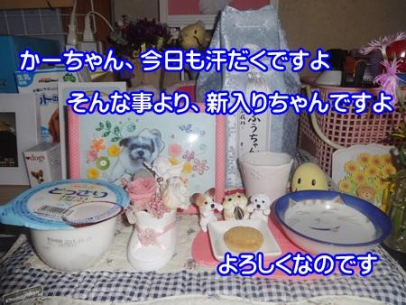 0904-03_2014090419394545e.jpg