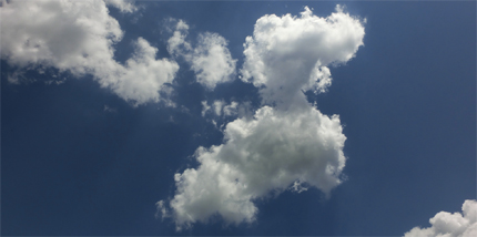 Degu 雲