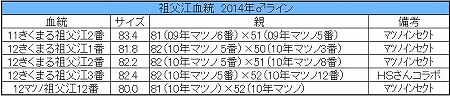 祖父江血統2014年♂ライン