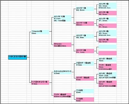 久留米7番血統図