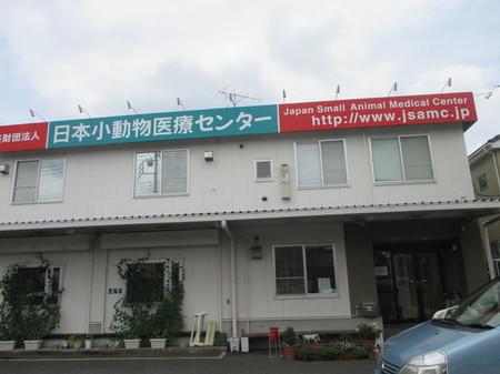 日本小動物医療センター。