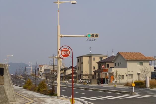 P1030337-1.jpg
