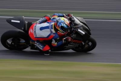 レース (1)