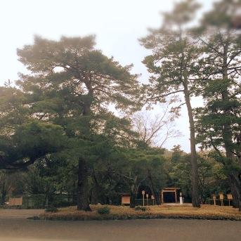 伊勢神宮201404 (3)