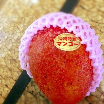 沖縄マンゴー201408 (1)