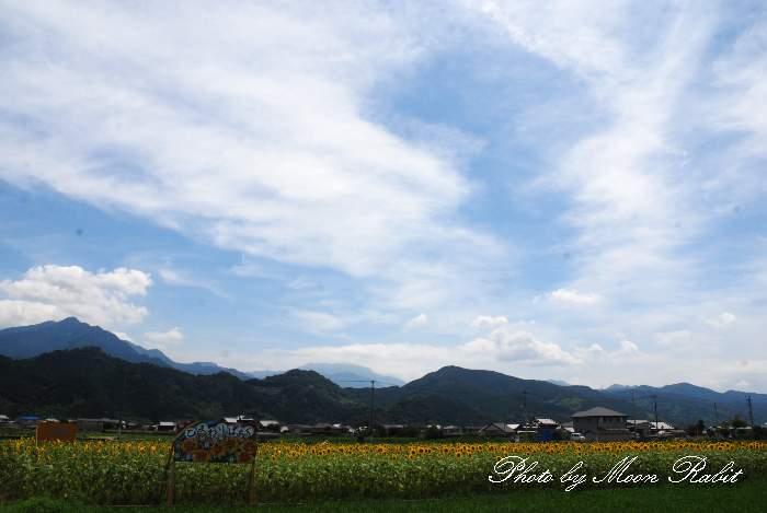 神戸小学校 ひまわりぱあく 愛媛県西条市中西