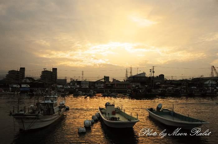 西条漁港 愛媛県西条市新堀下