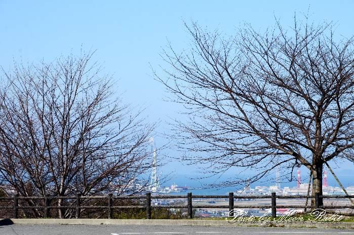 道の駅小松オアシス 愛媛県西条市小松町新屋敷