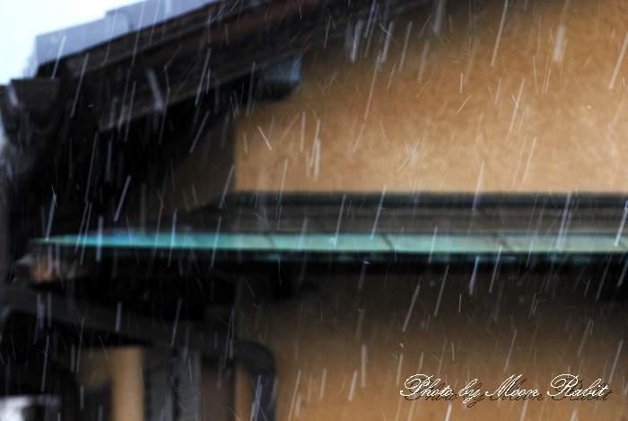 寒の戻り 霰(アラレ) 愛媛県西条市神拝