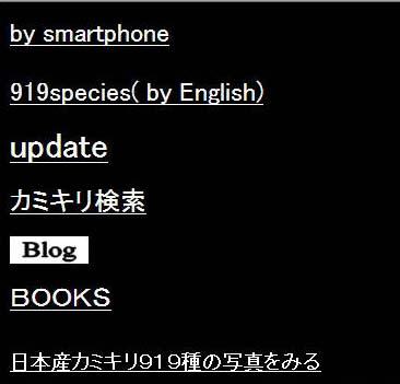 smartphone01.jpg