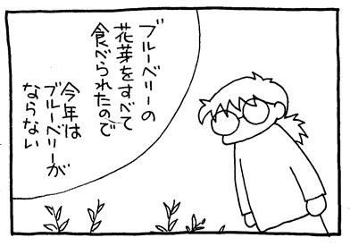 img302-crop01.jpg
