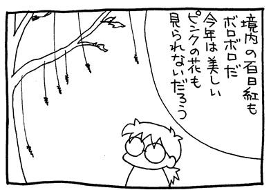 img302-crop03.jpg
