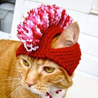 もひかん帽子