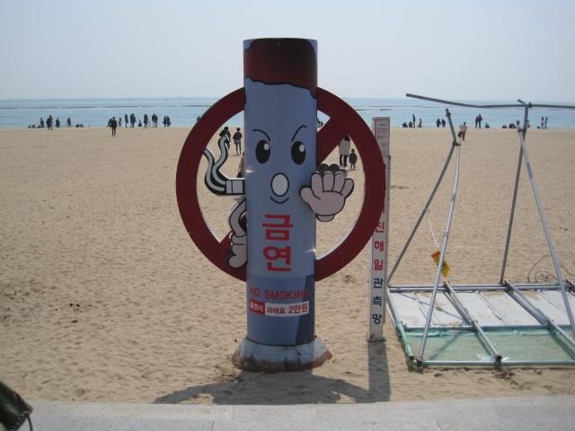 2014韓国 087
