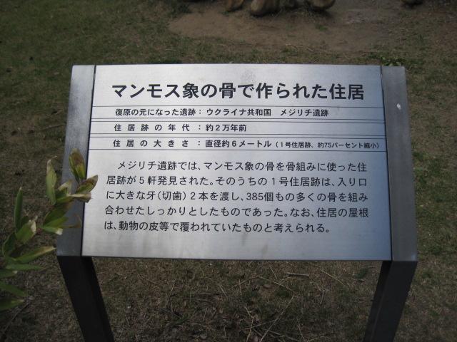 新潟 008